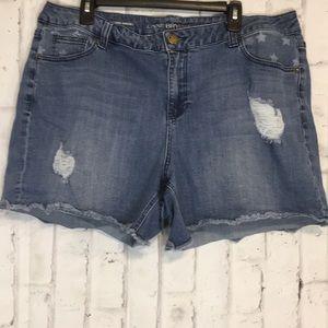 Lane Bryant Women's Distressed Jean Shorts